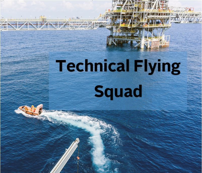 AMI Marine - Flying Squad